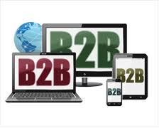 Learn About B2b Website Development